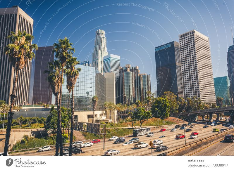 Los Angeles downtown los angeles skyline city california la daylight traffic palm tree travel american usa freeway united states cars blue buildings urban