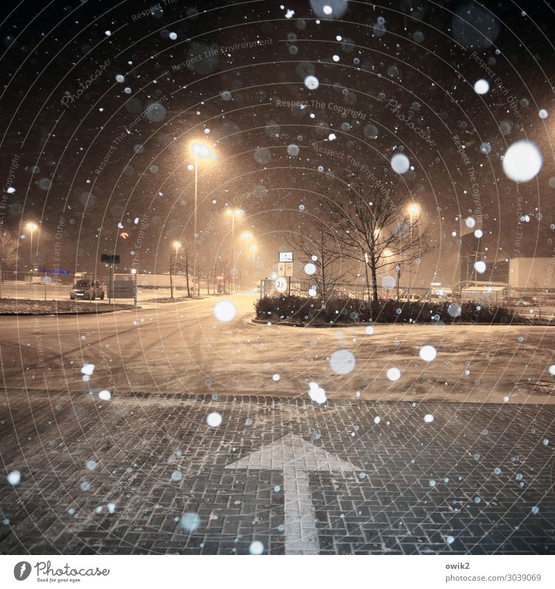 Snow again Winter Beautiful weather Snowfall Tree Bushes Poland Eastern Europe Transport Parking lot Parking lot lighting Street lighting Cobblestones Lamp post