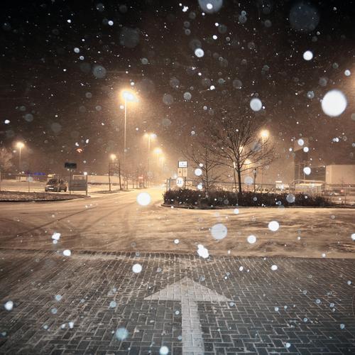 Snow again Winter Beautiful weather Snowfall Tree Bushes Poland Eastern Europe Transport Parking lot Parking lot lighting Street lighting Cobblestones Lamp post