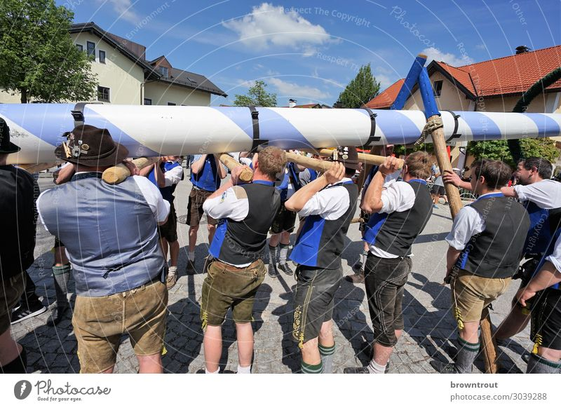 Maypole setting up in Upper Bavaria Lifestyle Feasts & Celebrations May 1 Human being Masculine Young man Youth (Young adults) Group 18 - 30 years Adults