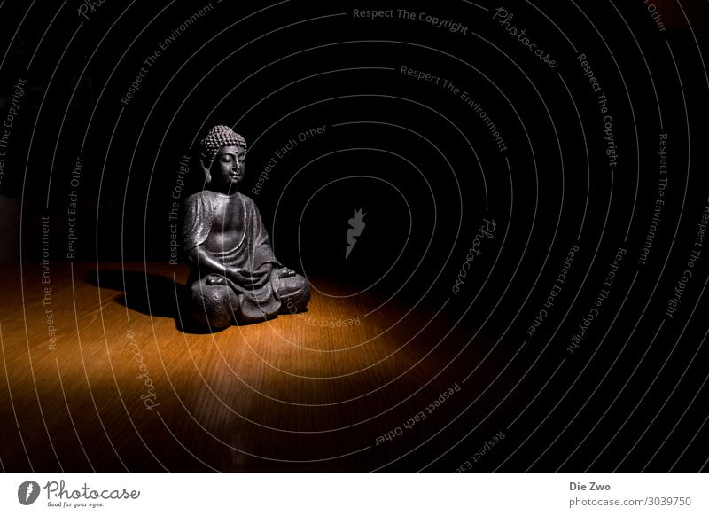 Buddha Lifestyle Style Design Relaxation Calm Meditation Decoration Acceptance Trust Safety (feeling of) Compassion Obedient Peaceful Dedication Altruism