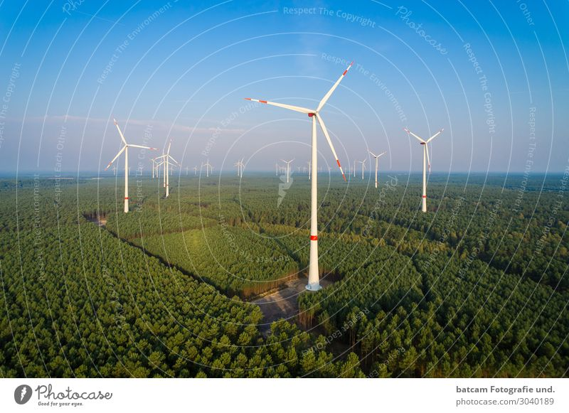 Aerial view wind farm in the forest Technology Energy industry Renewable energy Wind energy plant Nature Landscape Cloudless sky Sun Summer Climate change Tree