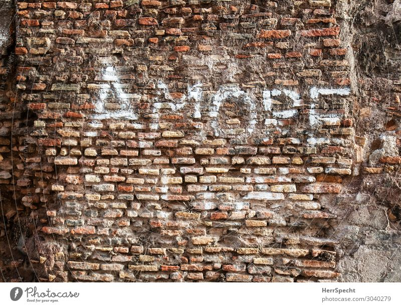 Historic graffito Wall (barrier) Wall (building) Characters Old Cool (slang) Positive Town Red White Love Infatuation Romance Desire Brick Brick wall amore