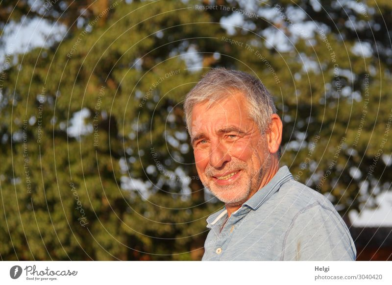 Portrait of a smiling senior with grey hair and grey three-day beard in the evening sun Human being Masculine Man Adults Male senior Senior citizen 1