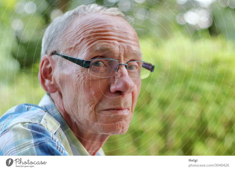 Close-up of a male senior who looks sceptically into the camera Human being Masculine Man Adults Male senior Senior citizen Head Hair and hairstyles Face 1