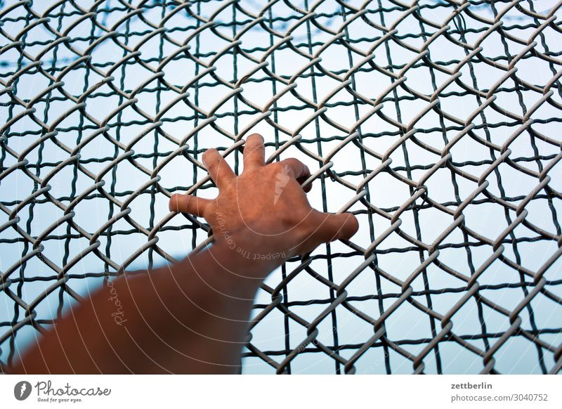 Hand in wire mesh fence Grasp Door handle To hold on Fence Wire netting fence Border Closed Exclude Emit Barred Barrier Freedom Liberate Liberation Captured
