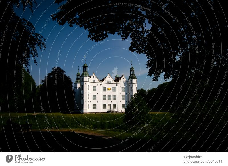 live better Design Trip Dream house Landscape Summer Beautiful weather Tree Park Germany Small Town Castle Building Stone To enjoy Smiling Looking Fantastic