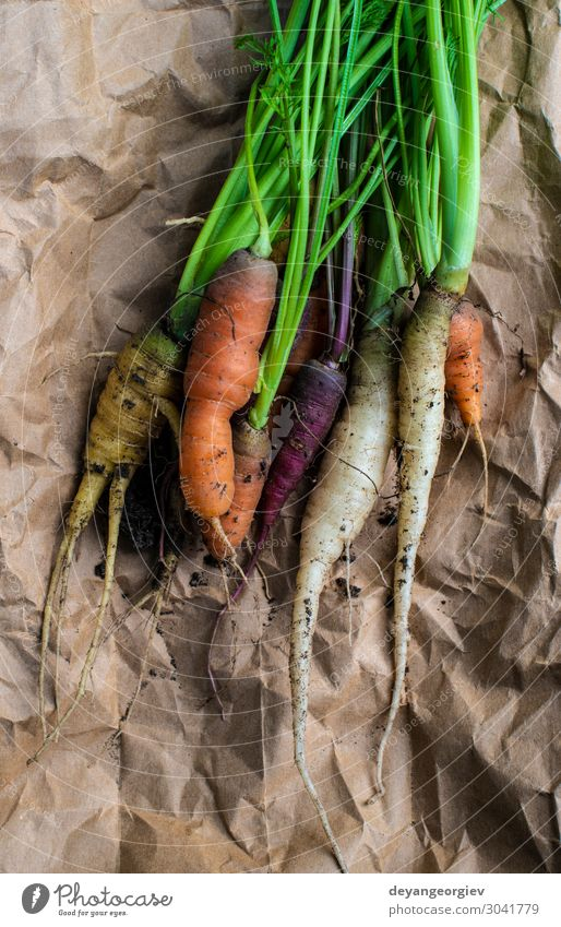 Carrots from small organic farm. Vegetable Nutrition Vegetarian diet Diet Garden Gardening Plant Earth Paper Growth Dirty Fresh Natural Green Colour Organic