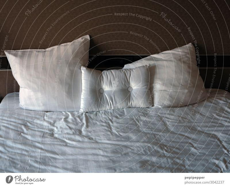 The Morning after Lifestyle Leisure and hobbies Living or residing Flat (apartment) Bed Hotel room Cushion Soft Subdued colour Interior shot Deserted