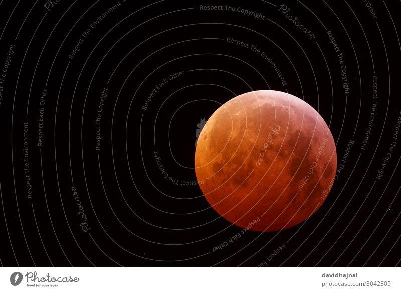 Lunar Eclipse 21 January 2019 Adventure Technology Science & Research Advancement Future High-tech Astronautics Astronomy Telescope Art Environment Nature Sky