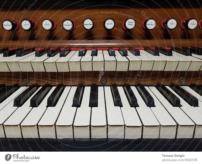 Old vintage harmonium, pipe organ keyboard close-up, frontal Leisure and hobbies Music Art Concert Musician Church Wood Retro Religion and faith Cathedral