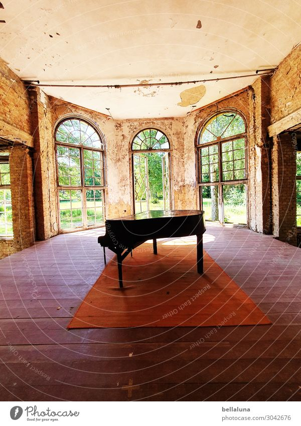 Old Beautiful Green House (Residential Structure) Window Architecture Wall (building) Building Art Wall (barrier) Brown Bright Door Dirty Music Glass