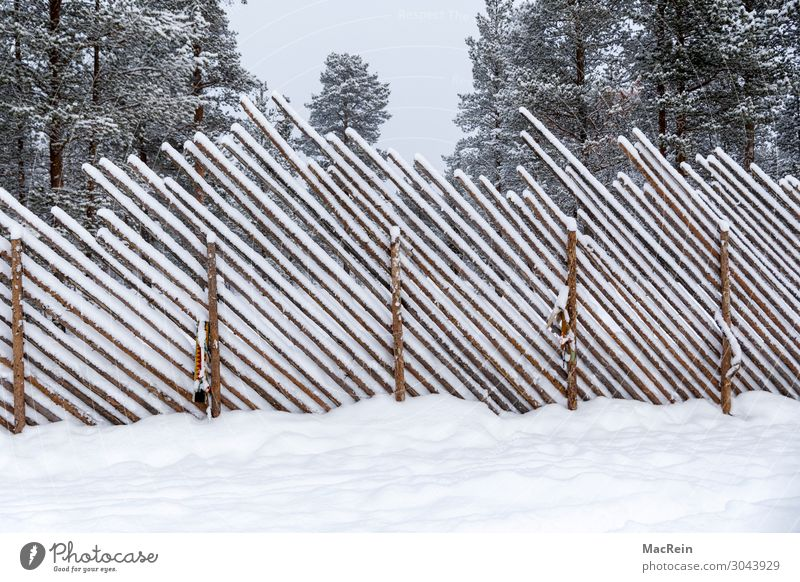 snow-covered fence Nature Landscape Winter Weather Ice Frost Snow Park Forest Fence Wooden fence Safety Protection Cold Snowfall Diagonal Wooden wall Deserted