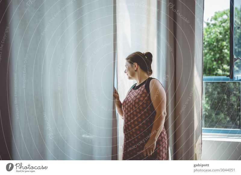 Neighbourhood I Human being Feminine Woman Adults Window Looking Curiosity Know Living or residing Neighbor Curtain Mistrust Copy Space left Colour photo