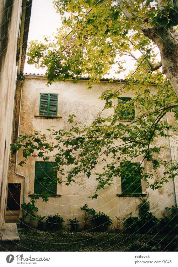 Jardin de Alfabia, Mallorca House (Residential Structure) Tree Garden Old Farm Mediterranean