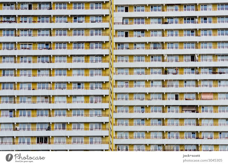 lead a monotonous life Functionalism Marzahn Town house (City: Block of flats) Tower block Prefab construction Facade Window Line Stripe Authentic Sharp-edged