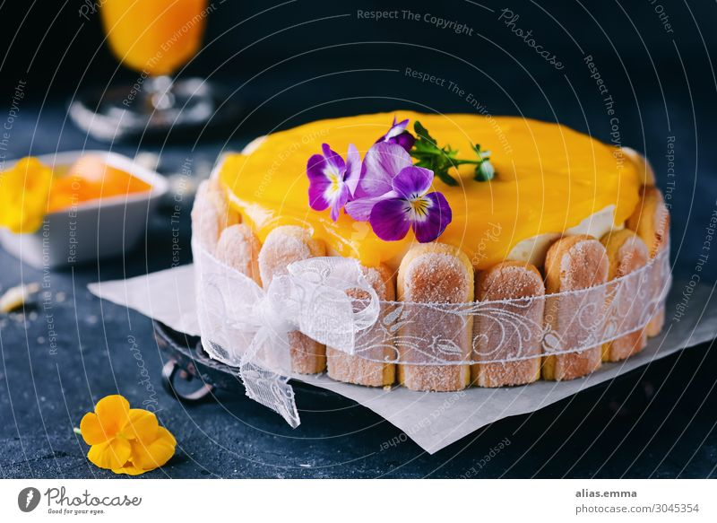 Passion fruit and peach cake on a dark background Cake Gateau Maracuja Peach Fruit flan Dark Healthy Eating Dish Food photograph Baked goods Nutrition Delicious