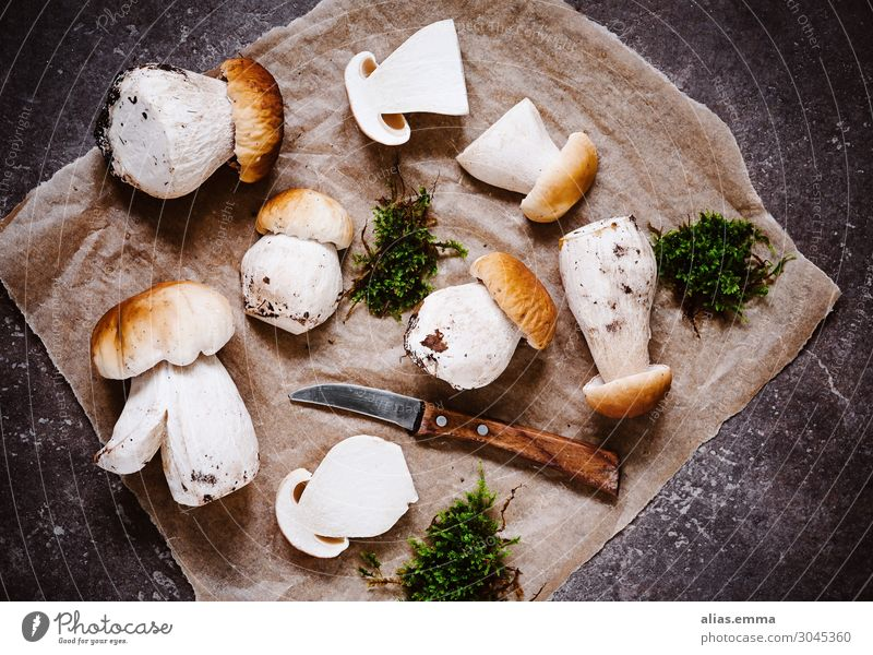 Tasty porcini mushrooms in autumn - mushroom season Boletus Boletaceae Mushroom picker Nature Forest Collection Accumulate Summer To enjoy Healthy Eating Dish