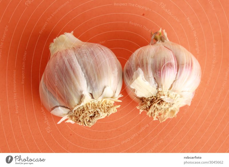 head of garlic in colorful background Vegetable Herbs and spices Nutrition Vegetarian diet Nature Plant Fresh Natural Red White Garlic bulb isolated Onion Raw