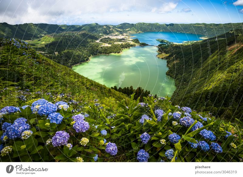 Lagoa Verde & Lagoa Azul Vacation & Travel Tourism Sightseeing Summer vacation Island Hiking Landscape Beautiful weather Volcano Lake Exotic Natural Blue Green