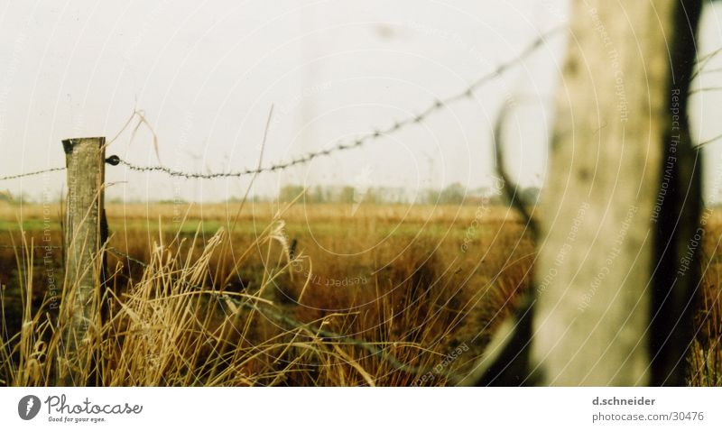Nature Far-off places Meadow Landscape Grass Field Fence Pasture Plain Straw Hay Wooden stake Barbed wire Fence post Pasture fence