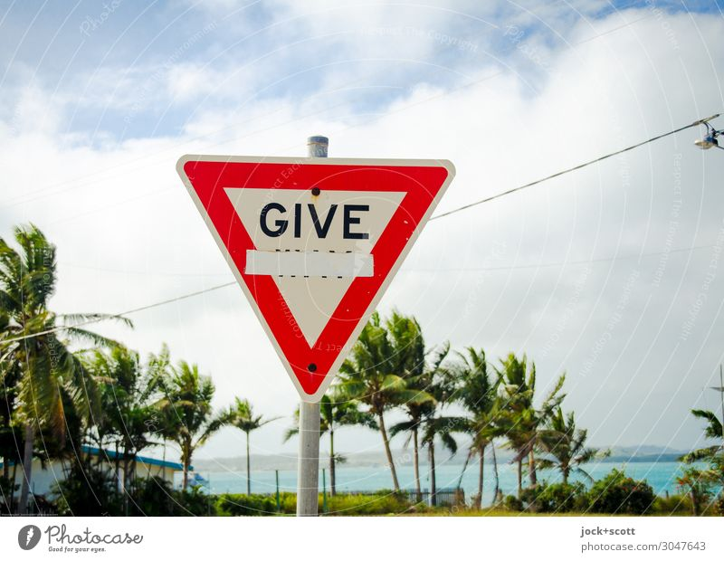 Give way, no way Far-off places Clouds Beautiful weather Warmth Exotic Palm tree Pacific Ocean Traffic infrastructure Road sign Safety Expectation Environment