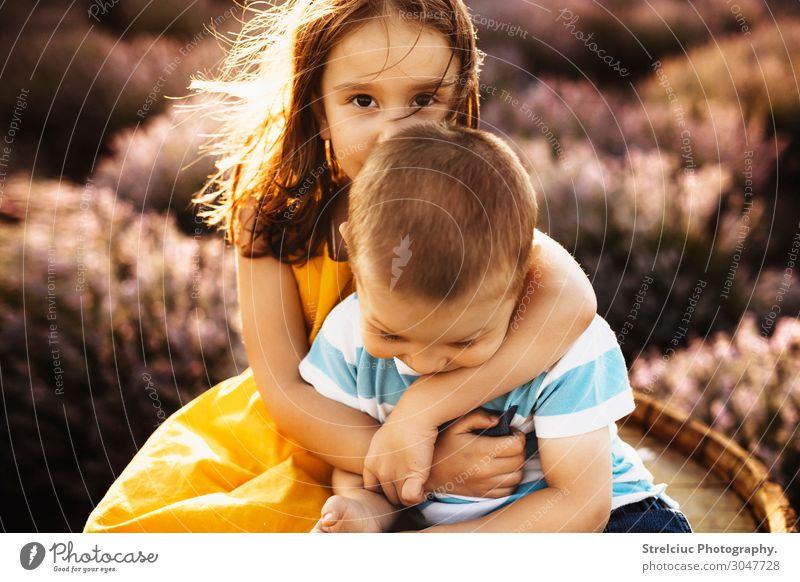 Brother and sister embracing Nature Summer Sun Joy Face Lifestyle Funny Emotions Family & Relations Laughter Happy Boy (child) Copy Space Playing Freedom