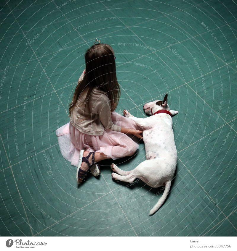 Girl with dog Parquet floor Tile Feminine 1 Human being Dress Jacket Brunette Long-haired Animal Pet Dog bull terrier Terrier Lie Sit Dream Passion Friendship