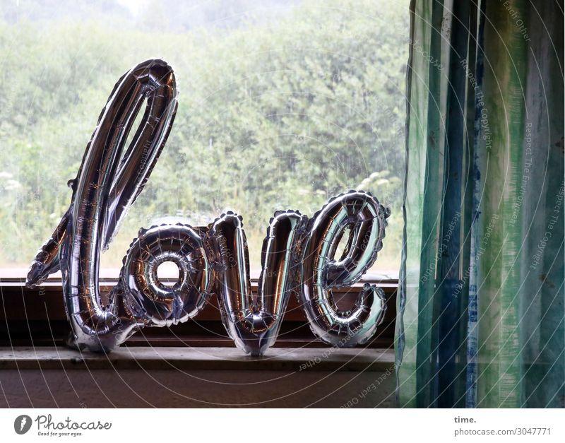 Window Life Love Moody Living or residing Design Decoration Rain Characters Communicate Air Idyll Bushes Future Romance Idea