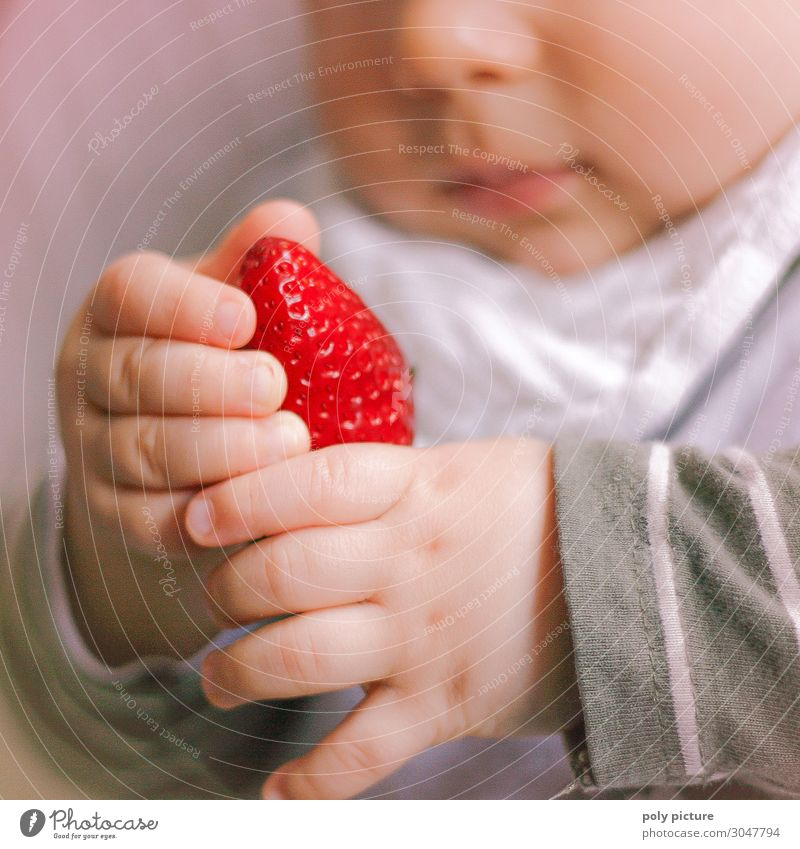 Baby plays with strawberry Lifestyle Healthy Health care Healthy Eating Leisure and hobbies Summer Child Family & Relations Infancy Hand Fingers 0 - 12 months