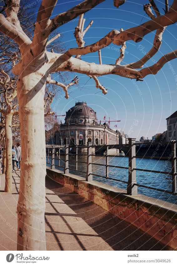 museum island Water Cloudless sky Spring Beautiful weather Tree River bank Downtown Berlin Museum island Spree Capital city Populated