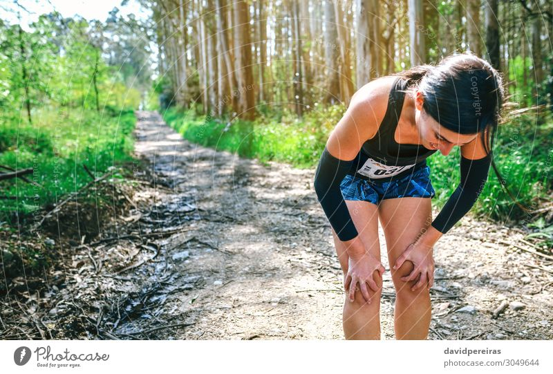 Female athlete pausing at a trail competition Lifestyle Sports Human being Woman Adults Nature Tree Forest Lanes & trails Fitness Fatigue Exhaustion Effort