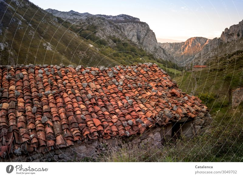 Old  A house in the mountains Roof crucible roof tiles House (Residential Structure) hut Mountains u Gebirge Nature Sky Landscape Grass green Environment Orange