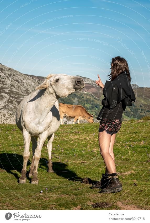 You gotta have a good instinct for dealing with cheeky horses. Trip Mountain Hiking Feminine Young woman Youth (Young adults) 1 Human being Nature Landscape