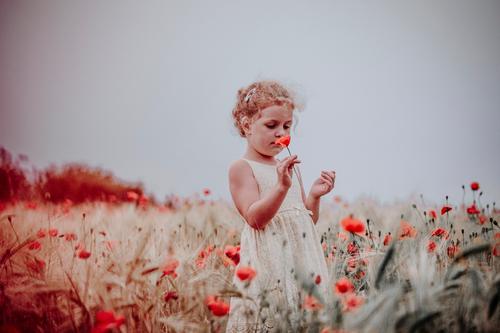 Child in poppy field Poppy field Field Poppy blossom Flower Blossom Red To hold on Girl Woman Feminine Plant Animal Summer Life Multicoloured Enchanting