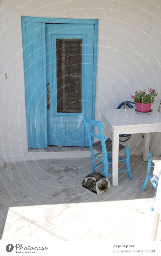 greece Vacation & Travel Tourism Living or residing Flat (apartment) House (Residential Structure) Chair Table Fishing village Wall (barrier) Wall (building)