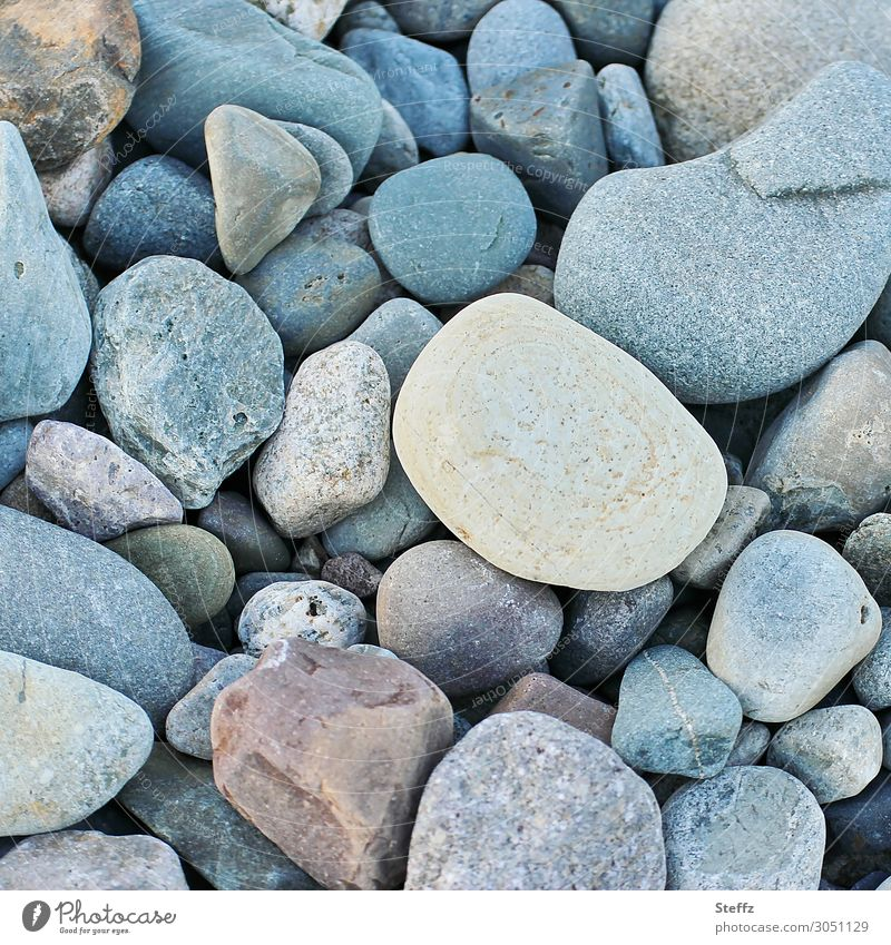 subject Environment Nature Earth Pebble beach Stone Old Sharp-edged Simple Uniqueness Small Near Natural Beautiful Many Blue Attentive Structures and shapes