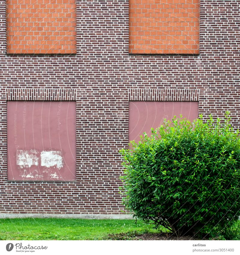 City Hall of Schilda House (Residential Structure) Facade Window Wall (barrier) Closed fool Absurdity Deserted Loneliness Uninhabited Ruin