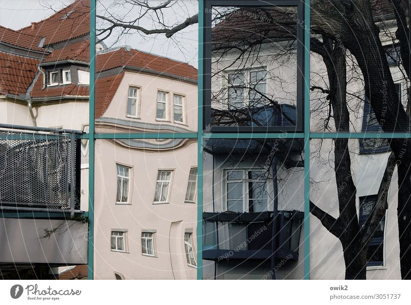 bit by bit Cloudless sky Tree Tree trunk Branch Bautzen Germany House (Residential Structure) Wall (barrier) Wall (building) Facade Balcony Window Town Crazy