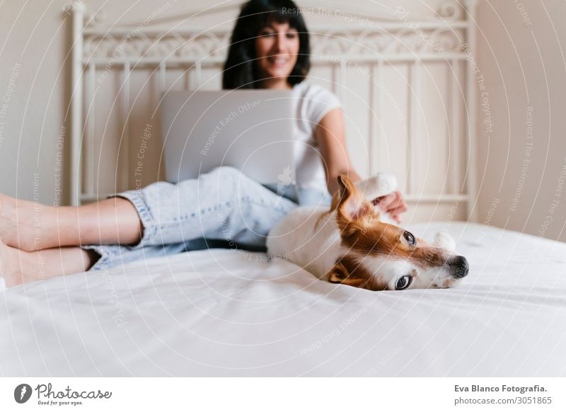 young woman on bed working on laptop.Cute small dog besides Lifestyle Joy Happy Beautiful Relaxation Playing Flat (apartment) Bed Computer Notebook Technology