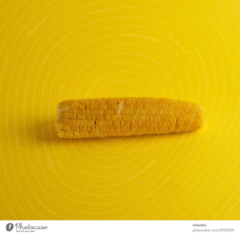 boiled corn cob lies on a yellow background Vegetable Nutrition Vegetarian diet Diet Summer Nature Plant Leaf Fresh Natural Yellow Gold agriculture Cooking