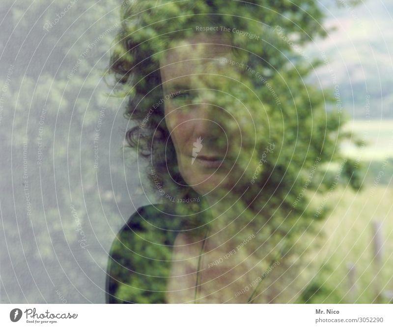 Woman Human being Nature Leaf Calm Adults Natural Feminine Meditative 45 - 60 years Observe Curiosity Hope Longing Serene Trust