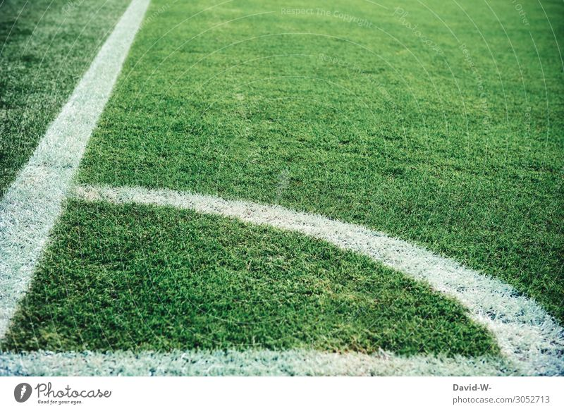 Football pitch green grass and white lines soccer Football stadium Sports Exterior shot Colour photo Stadium Sporting Complex Playing Sporting event
