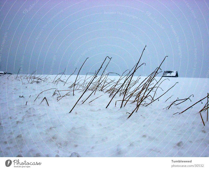 Snow drift.... Winter Sanddrift Cold House (Residential Structure) Sky
