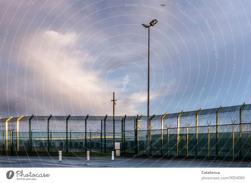 A deserted, well guarded border installation. A seagull flies over it in a cloudy sky Fence Border Floodlights Wire netting Seagull Sky Clouds Bad weather