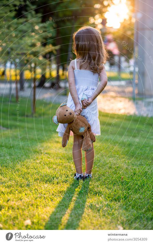 Girl with a bear girl toy sunset park green grass dress summer warm soft beautifull weather