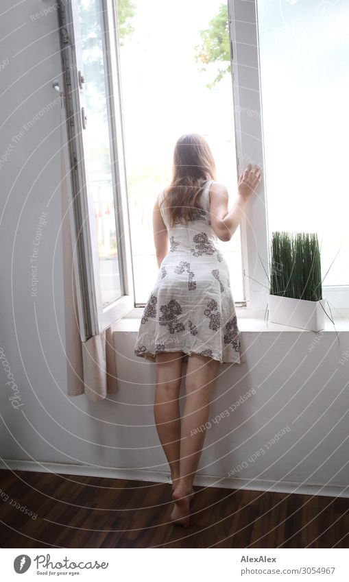 Young woman leans out the window Lifestyle Style Beautiful Well-being Flat (apartment) Room Window Youth (Young adults) Legs 18 - 30 years Adults