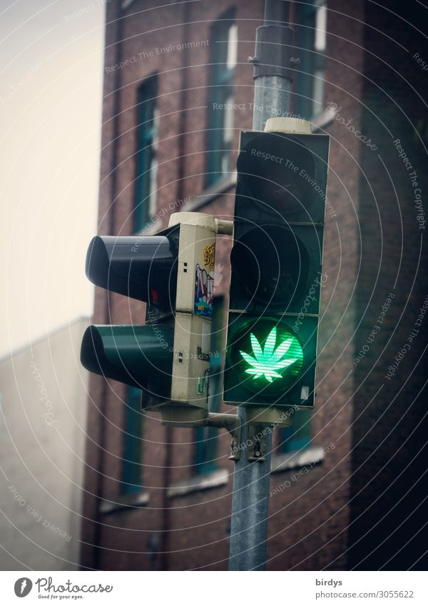 legalize it .... Alternative medicine Intoxicant Relaxation Leaf Cannabis leaf Traffic light Sign Road sign Illuminate Authentic Exceptional Cool (slang)