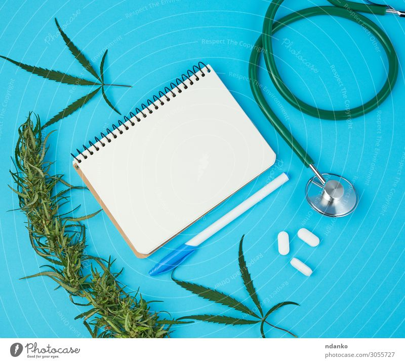 open notebook with white blank sheets, hemp twig Herbs and spices Health care Alternative medicine Intoxicant Medication Culture Nature Plant Grass Leaf Paper