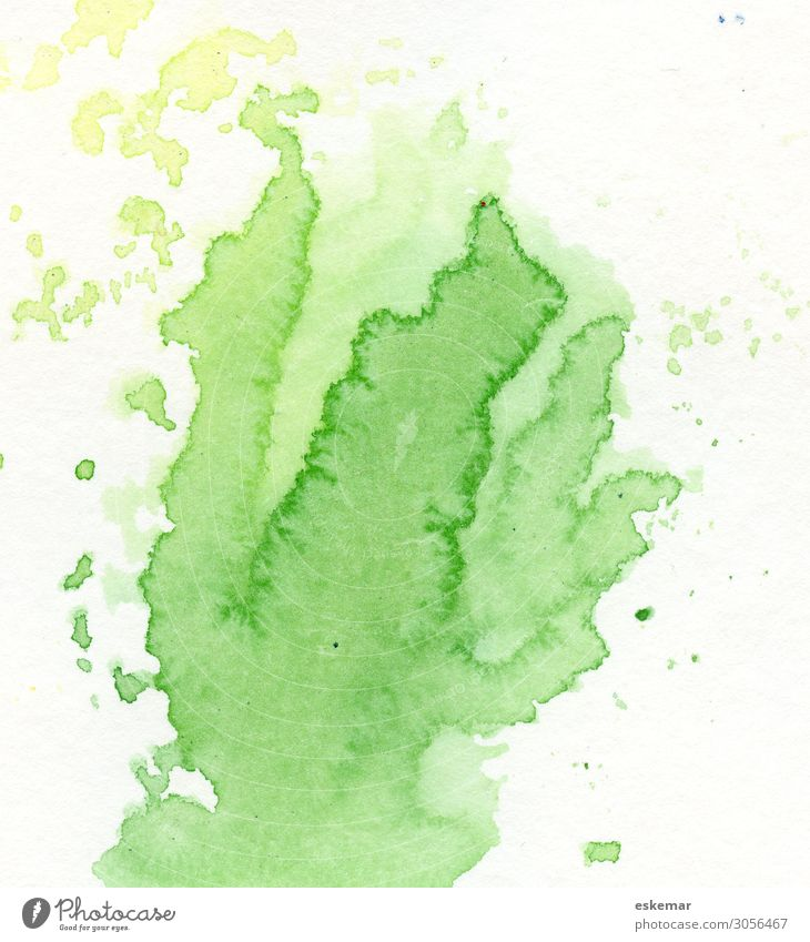 Nature Colour Green White Joy Healthy Background picture Spring Art Copy Space Fresh Esthetic Happiness Creativity Painting and drawing (object) Painted
